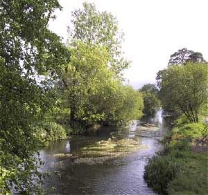 fishing, tipperary, ireland, trout, salmon